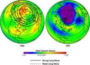Ozone damage