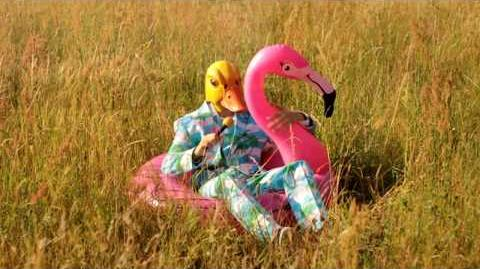 Ingo Ohne Flamingo