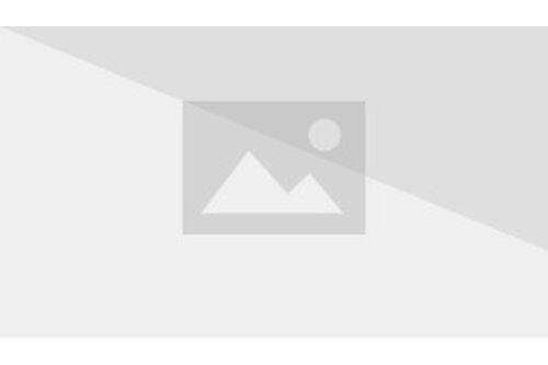Geronimo Stilton Wiki