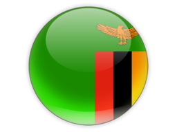 File:ZAM Flag.png