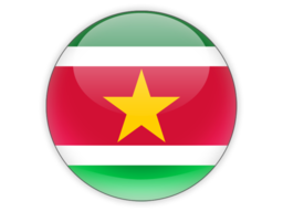 File:SUR Flag.png