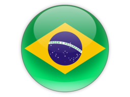 File:BRA Flag.png