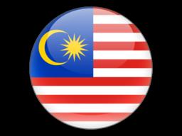 File:MYS Flag.png