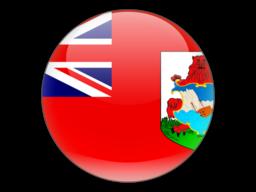 File:BMU Flag.png