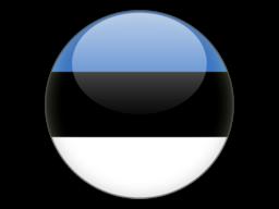 File:EST Flag.png