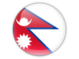 File:NPL Flag.png