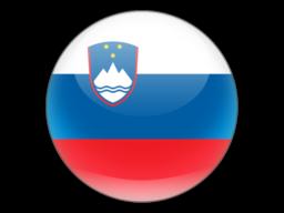 File:SVN Flag.png
