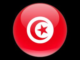 File:TUN Flag.png