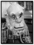 Grandpa Ebenezer Twink