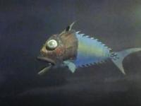 Mechanical Fish (master plan)