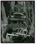 Aquaphibian