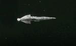 Ginerva's ship