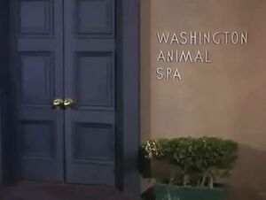 Washington-animal-spa