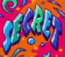 Secret Level