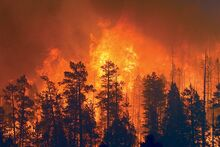 Wallow flames Color t670