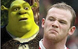 Shrekandrooney
