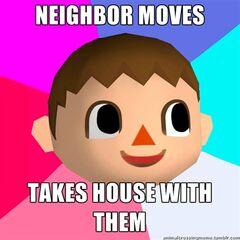 Animal Crossing Logic