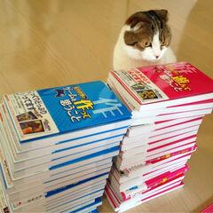 Sakurai's Cat receives the now-obsolete strategy guides.