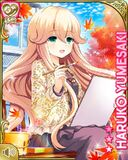 庭先の秋 Haruko