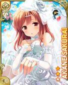 花嫁の手を Akane