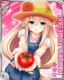 太陽の恵み Haruko
