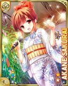 七夕13+ Akane
