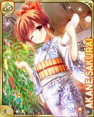七夕13 Akane