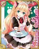 猫カフェ+ Haruko