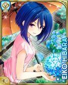 雨中の花 Eiko