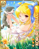 高原の少女 Koruri