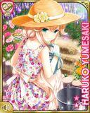 魔法の愛情+ Haruko