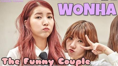 WonHa (cr- Channel Yeochin)