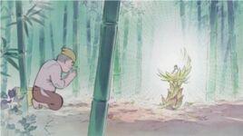 Ghibli-kaguya-geburt