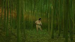 Ghibli-rote-schildkröte-wald