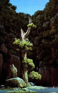Mononoke-forest