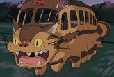 Katzenbus