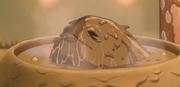 Faulgott im Becken