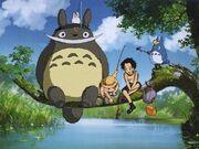 Totoro-one-piece
