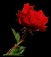 RoseRouge