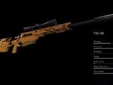 TAC-50/Ghost Recon Wildlands