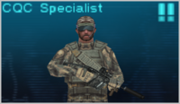 CQC Specialist