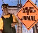 Sheldon Turnipseed