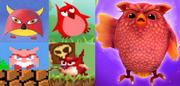 Owlsevolution