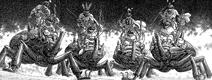 Beetle Riders