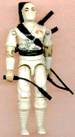 Storm Shadow 1984