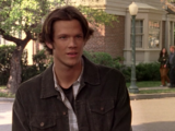 Dean Forester/Gallery