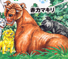 Akakamakiri GTLW ed1 vol13