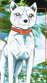 Koyuki GDW ed1 vol52