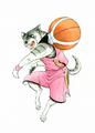 Kurotora Basketball