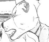 Masashige's Ohr2